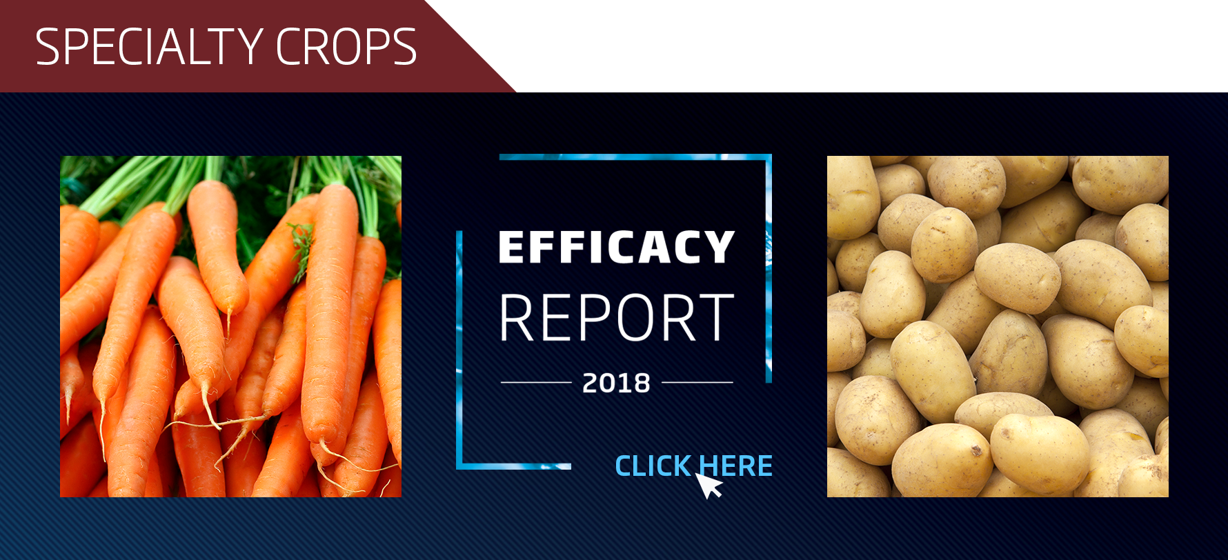 2018 Efficacy Report SPECIALTY CROPS