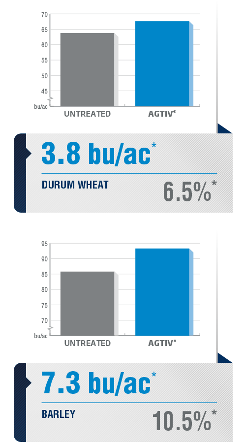 <p><em>The average yield is a comparative analysis of performance datas collected in plots with a field section treated with AGTIV<sup>®</sup> </em><em>and a control section.</em></p> <p><em>*DURUM WHEAT:+3.8 bu/ac (+6.5%), 12sites over 7 years, Canada</em></p> <p><em><em><em><em><em>BARLEY: +7.3 bu/ac (+10.5%), 28 sites over 6 years, Canada and Europe</em></em></em></em></em></p> <p><em><em><em>Note: 1 bu/ac = 67.25 kg/ha (wheat) / 1<em><em>bu/ac = 53.8 kg/ha (barley)</em></em></em></em></em></p>