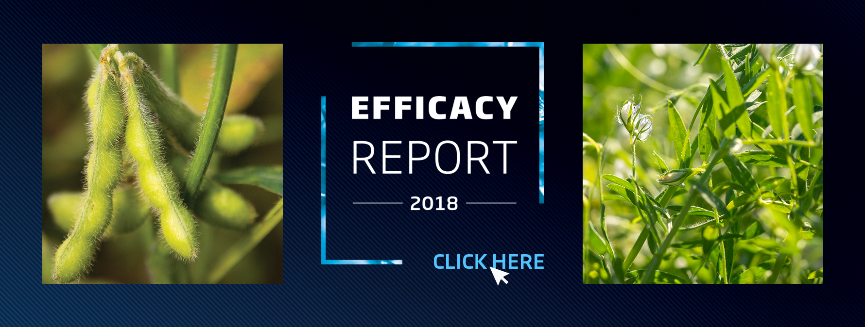2018 Premier Tech's Efficacy Report