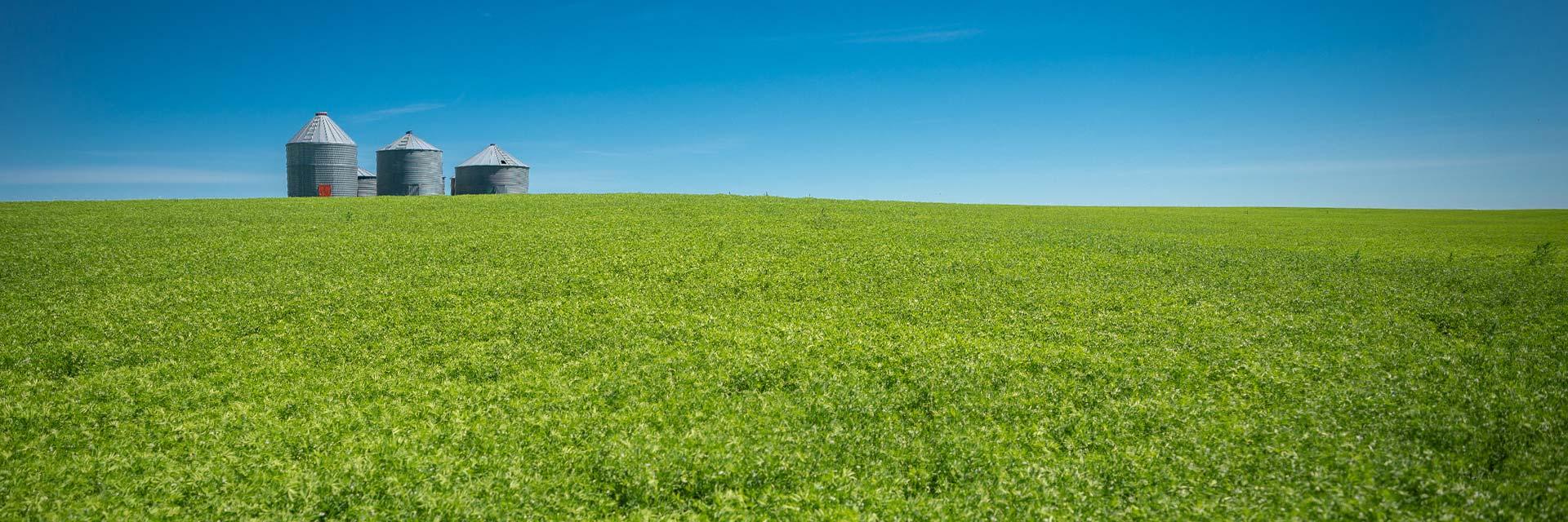 AGTIV crop rotation inoculants