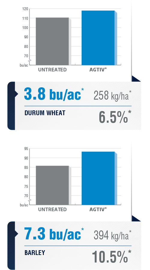 <p><em>The average yield is a comparative analysis of performance datas collected in plots with a field section treated with AGTIV<sup>®</sup> </em><em>and a control section.</em></p> <p><em>*DURUM WHEAT:+3.8 bu/ac (+6.5%) +258 kg/ha,12 sites over7 years, Canada</em></p> <p><em><em><em><em><em>BARLEY: +7.3 bu/ac (+10.5%) +394 kg/ha, 28 sites over 6 years, Canada and Europe</em></em></em></em></em></p> <p><em><em><em>Note: 1 bu/ac = 67.25 kg/ha (wheat) / 1<em><em>bu/ac = 53.8 kg/ha (barley)</em></em></em></em></em></p>